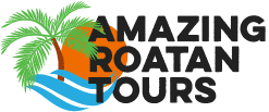 Amazing Roatan Tours – Roatan Tours & Excursions / Zip-line / Snorkeling / Beach / Little French Key